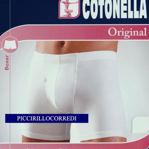 boxer-cotonella-art-8308