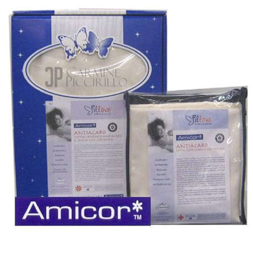 Amicor-2
